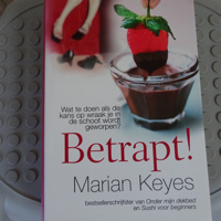 Betrapt !! van bestsellerschrijfster Marian Keyes ( 476 blz)