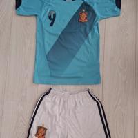 voetbal shirt + broek Spain - Torres 7 maat 152