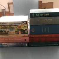 Streekromans Nederlands diverse schrijvers