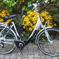 Perfecte elektrische unisex fiets