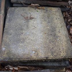 Stoeptegels ca 30x30x4 cm