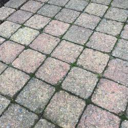 Kleine vierkante tegels terras