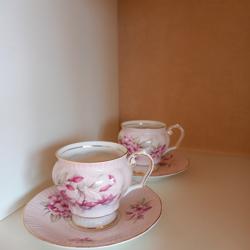 2 mooie Queen's England (roze) kopjes en schoteltjes