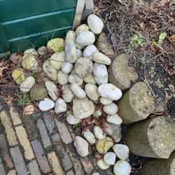 Stenen af te halen