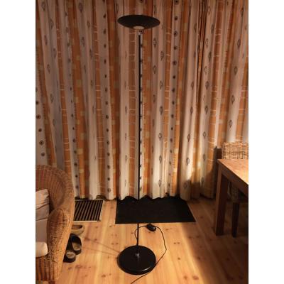 Staande vloerlamp (1,90 m)