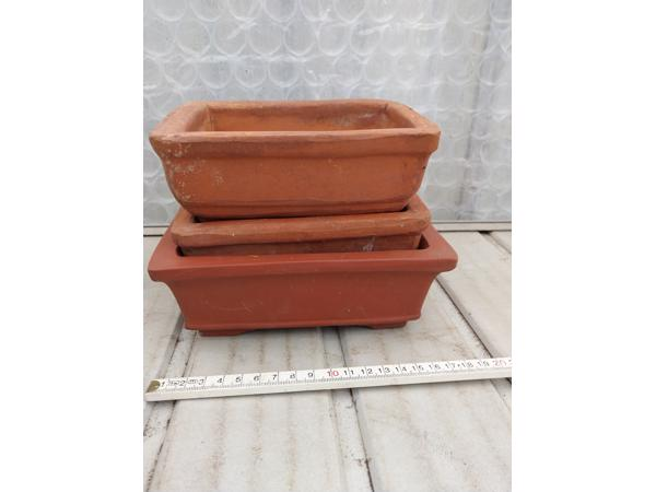 Bonsai schalen te koop