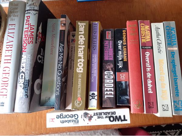 Vakantie lectuur, diverse romans, aantal in Engels